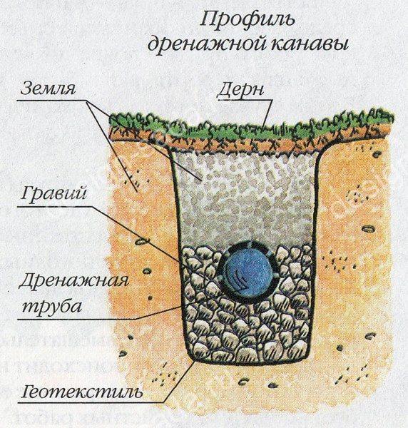 Дренаж почвы как сделать