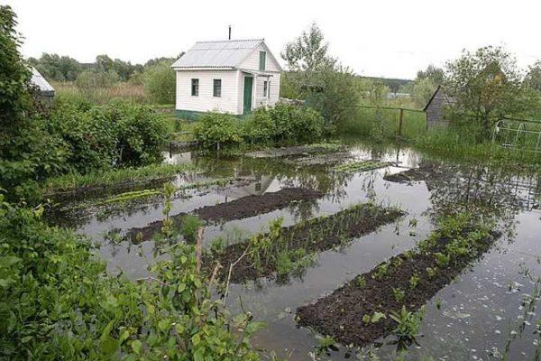И это, заметьте, не весенний паводок.