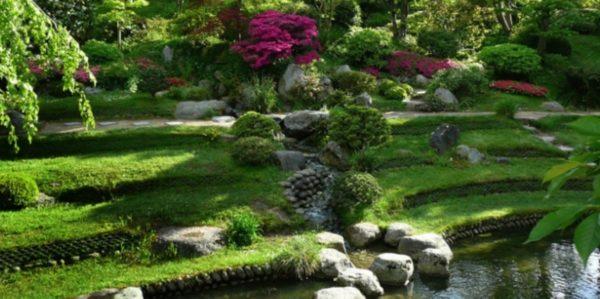Качественный дренаж – красивое озеленение